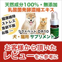 ラクトペットDR10 - 楽天レビュー