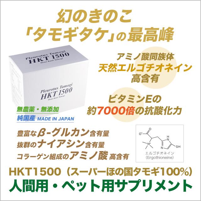 幻のきのこ「たもぎ茸」の最高峰 スーパーほの国タモギ100% HKT1500
