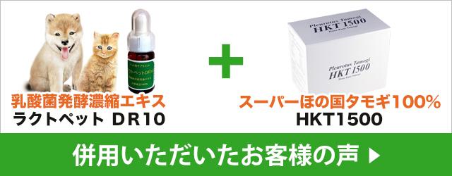 お客様の声 - DR10 + HKT1500