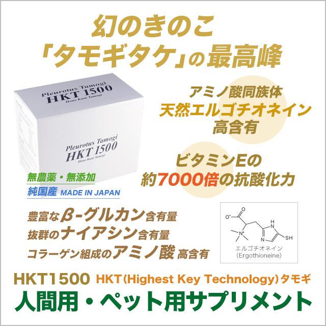 HKT(Highest Key Technology)タモギ100%