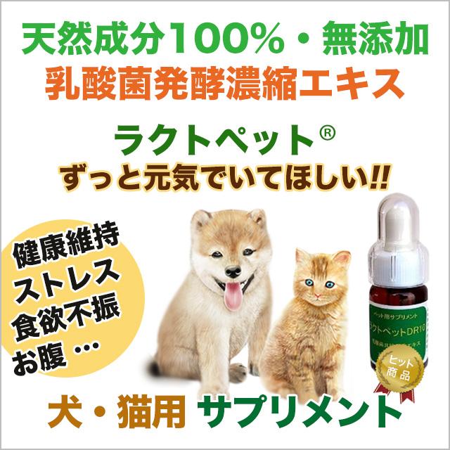 犬用・猫用 ペット用サプリメント ラクトペット
