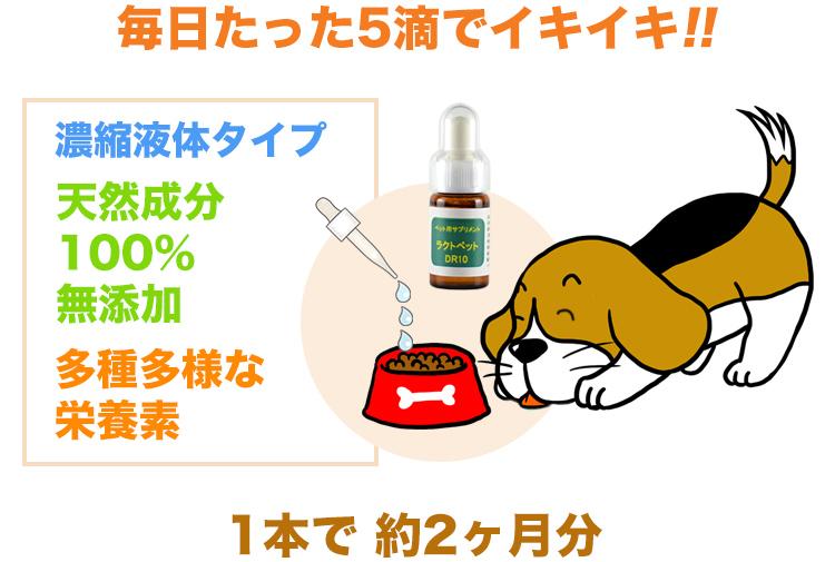ラクトペットの特徴 - 毎日たった5滴でイキイキ・濃縮液体タイプ・天然成分100%・多種多様な栄養素