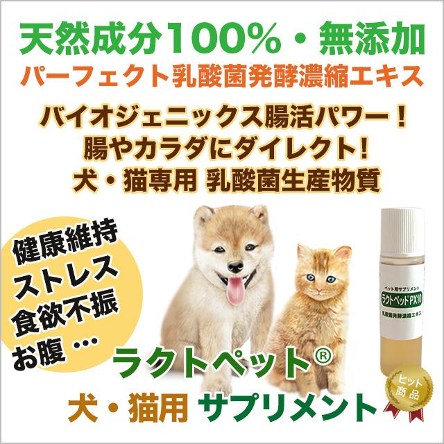 犬・猫専用サプリメント ラクトペット