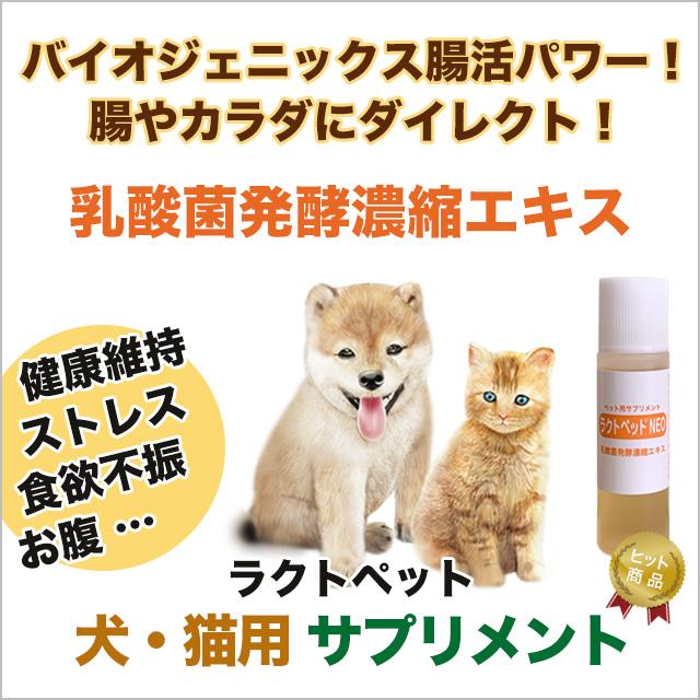 犬・猫専用サプリメント 乳酸菌発酵濃縮エキス ラクトペットNEO