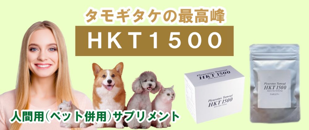 HKT1500 タモギタケ 最高峰 たもぎ茸 エルゴチオネイン トップクラス ビタミンE 活性酸素 β-グルカン 食物繊維 アミノ酸 ナイアシン ビタミンB3 NAD 長寿遺伝子 サーチュイン遺伝子 コラーゲン ビタミンD 国産 人間 ペット 犬 猫 ねこ ネコ サプリメント